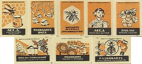 Пчеловодство и продажа меда в СССР