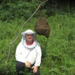 Пчеловод Канунников и рой