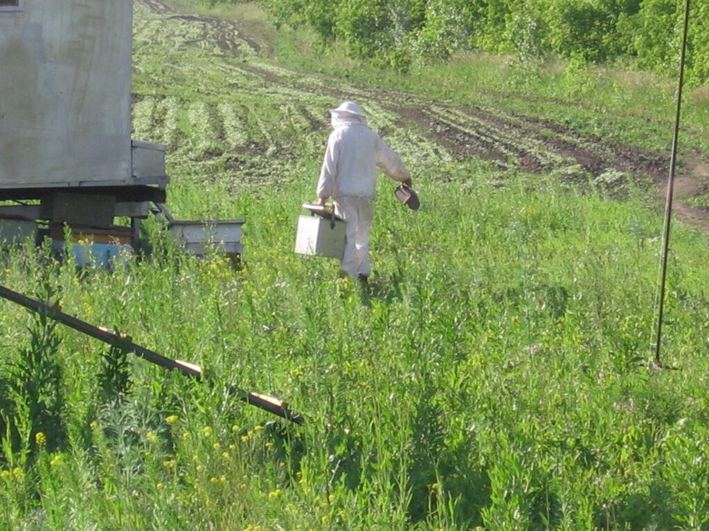 Пчеловод в работе