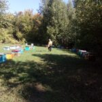 Осень на пасеке