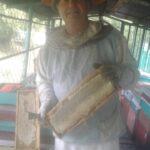 Пчеловод Канунников с рамкой меда