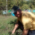 Канунников собирает грибы