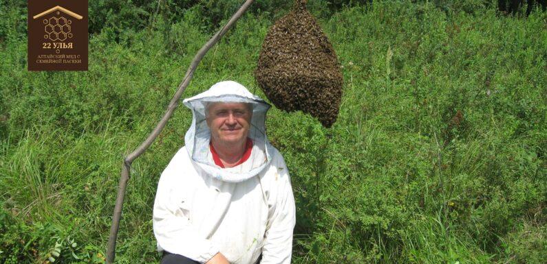 Где найти реального пчеловода?