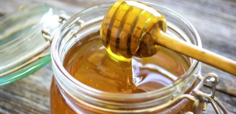 Алтайский мед источник пользы для здоровья