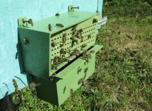 Инвентарь - Пыльцеуловитель