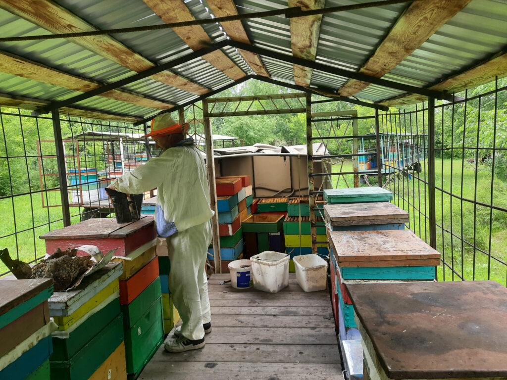 С телеги с ульями магазины с медом попадают сразу в кузов УАЗа