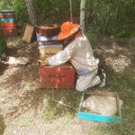 Пчеловод на коленях перед ульем