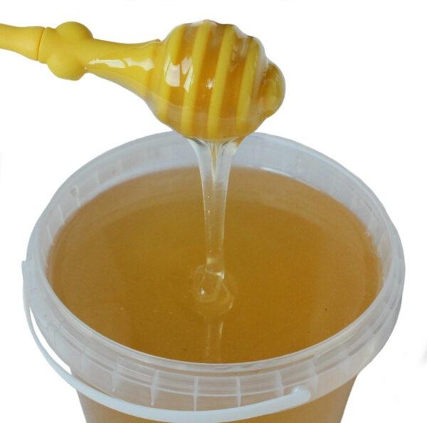 Мёд донниковый